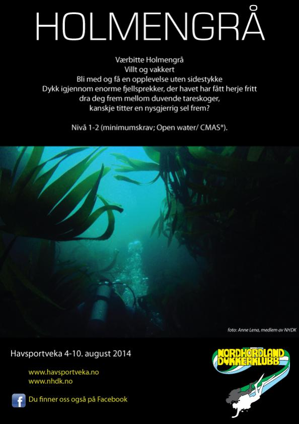 Click image for larger version.  Name:holmengraa.jpg Views:118 Size:50.5 KB ID:48887