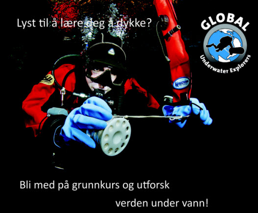 Click image for larger version.  Name:fue_annonse_Grunnkurs_2015_Liten.jpg Views:211 Size:61.1 KB ID:49333